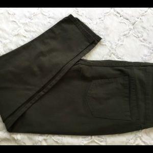 Baccini Jeans Dark Olive NEW
